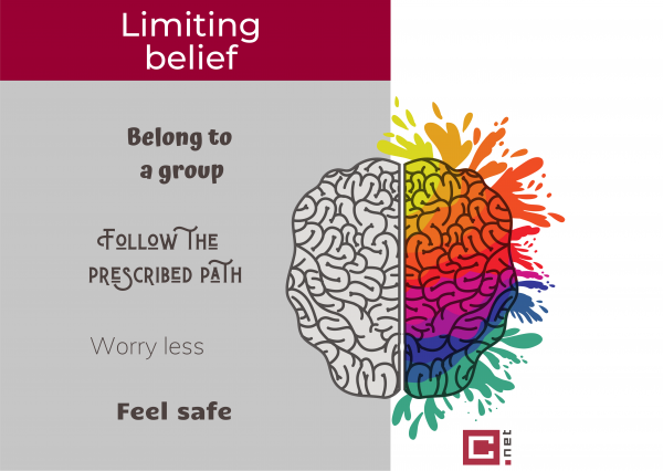 Limiting beliefs preserve certain teaching methods